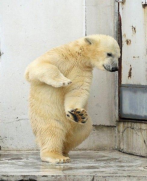 踊る.jpg
